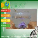 La naturaleza de la calidad de tofu arena de gato con un disco macizo