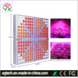 14 Watt 225 LED vermelho de crescimento vegetal hidroponia azul do painel de luz