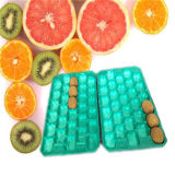 Customed Size Disposable Various Color Eco-Friendly PP Plastic Tray for Kiwi Fruit
