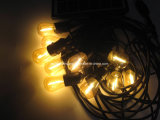 17 بصيلة [لد] خارجيّة صامد للمناخ [كمّرسل غرد] خيط أضواء