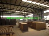 WPC Door Production Line avec du CE Approved