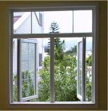 [بفك] مزدوجة يزجّج شباك نافذة مع شبكة تصميم