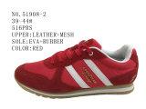 Nr 51908 Schoenen van de Voorraad van de Sport van de Schoenen van Drie Verfhandelaars de Toevallige