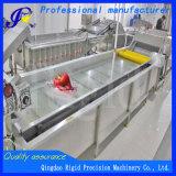 Lavatrice di verdure della bolla del pulitore della strumentazione dell'alimento