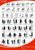 Estensione messa strumentazione della strumentazione di forma fisica/lato di concentrazione Machine/Body Building/Gym