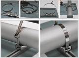 Rol en Strook van het Roestvrij staal van Hr/Cr AISI 304 de de Koudgewalste