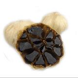 Organischer natürlicher gegorener schwarzer Knoblauch mit Plastikglas-Verpackung