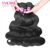 Yvonne por grosso de Cabelo humano em bruto de extensão de pacotes de cabelos humanos brasileiros