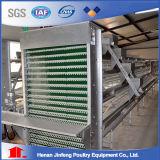 Automatisches Geflügelfütterung-Systems-Huhn-Batterie-Huhn, das Gerät anhebt
