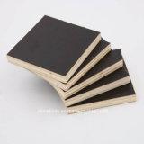 Película de Brown enfrenta de forma concreta de contrachapado de madera contrachapada, Encofrado de madera de construcción