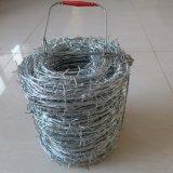 保護されるのための熱浸された電流を通された有刺鉄線