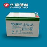 12V 12ah de Zonne Zure Batterij van het Lood van het Gebruik