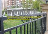 Glavnized Rasiermesser-Wand-Spitzen auf dem Zaun (Zinkbeschichtung 200g/sqm)