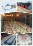 Automatische Kweker die Apparatuur voor het Huis van de Landbouw van het Gevogelte opheffen