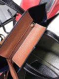 Sacos de ombro da senhora Bolsa Quente Venda Desenhador da forma (WDL0094)