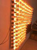 Светильник стены влияния пожара 99SMD шарика светильника фликера пламени E27 E26 E14 B22 E12 СИД 5W