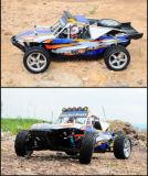 Sommer-Wüste, die RC Düne-Buggy läuft