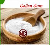 공장 최신 판매 경쟁적인 Gellan 실리콘껌
