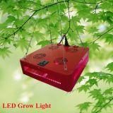 高い明るさ216W LEDは温室のために軽く育つ