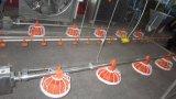 床挿入システム家禽の供給装置