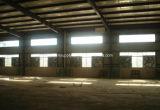 1220mm /48 '' ohne Blendenverschluss-an der Wand befestigten Geflügel-Haus-Absaugventilator