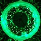 Indicatore luminoso di striscia flessibile decorativo di RGB LED dell'indicatore luminoso di striscia di lunga vita LED