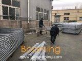頑丈なチェーン・リンクの網の一時塀の卸売