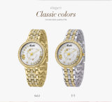 Wristwatch женщин конструкции шкалы вахт ювелирных изделий диаманта Belbi для восхитительного кристаллический золота подарка кварца повелительниц и цвет T/T 2 для вас