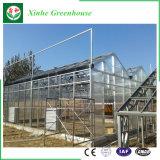 現代農業のためのパソコンシートの情報処理機能をもった温室