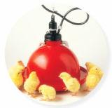 Système de buveur de poulet à rôtir de ferme avicole de poulet (plastique)