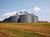 Acero Arroz de grano pequeño leche Silo de almacenamiento de depósito para la venta