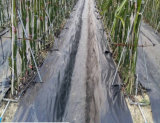 Ткани барьера циновки земной крышки/Weed PP/Weed с квадратом Rutet