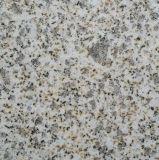 Pietra variopinta del granito del rifornimento del fornitore per uso della parete/pavimento/mattonelle
