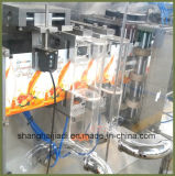 Stand up Pouch Filling and Sealing Machine