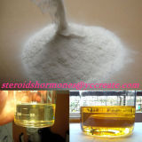 Primobolan 높은 순수성 대략 완성되는 스테로이드 기름 또는 액체 100mg/Ml Methenolone 아세테이트