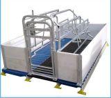 Оборудование для разведения свиней ТЗ Farrowing пера пера для продажи Farrowing ящиков
