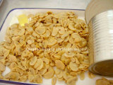 Champignon de couche en boîte de Pns pour le niveau de pays de GCC, couleur blanche, goût normal (HACCP, OIN, HALAL, CACHERS)