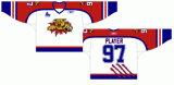 Hokey di ghiaccio domestico personalizzato della strada dei gatti selvatici 1996-2012 principale di Moncton della Lega di Hockey di junior della Quebec Jersey