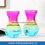 De kleurrijke Hydroponic Vaas van het Glas