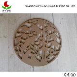 صفح بلاستيكيّة يجعل في الصين