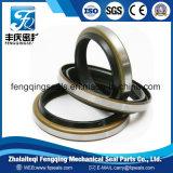 Guarnizione di gomma di Dkb con il coperchio del metallo per il cilindro