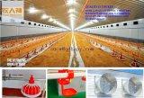 Heated зонтик в доме цыплятины с другими сопрягая машинами