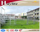 Австралия стандартный крупного рогатого скота во дворе панели оборудования раздавить аппарели