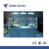 Effacer//Ultra clair trempé teinté en verre trempé avec bords polis/trous/des tailles de coupe