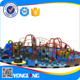 Yl-D043 Unique Outdoor Interactive Game Plastic와 Metal Playground