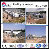 軽い鉄骨構造の層の家禽耕作