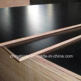 Venta caliente Negro 15mm de finger joint Film enfrenta la madera contrachapada con mejor precio
