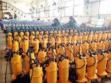 Pompe à eau submersible de HP de la pompe 0.5 de chimpanzé pour l'eau propre