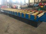 Roulis en acier personnalisé de couleur formant la machine en Chine