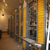 Maison de la volaille en acier pour contenir la couche d'équipements de reproduction des cages et les buveurs